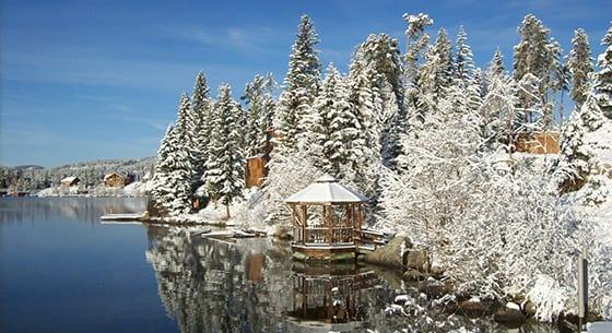 Winter Wildlife Snowmobile Grand Lake